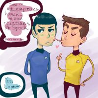 DUTY OF A STARFLEET OFFICER by noisystar
