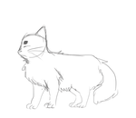Lil Cat Animation by zullyvantas