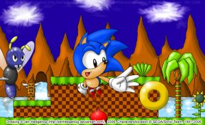 Sonic in the Green Hill Zone by JenHedgehog