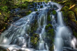 Mossy Waterfall HDR by mjohanson