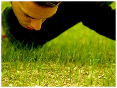 The Grass Whisperer by JeanFrancois