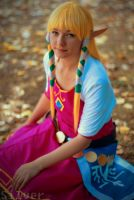 Zelda Skyward Sword by Keekal