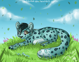 In the grass by Satuka