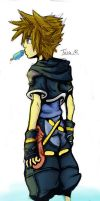Sora and His Seasalty by witchiamwill