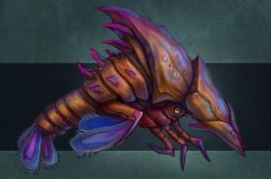 Bull Shrimp by FirstKeeper