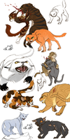 Warrior Cats Fighting by kbird1994