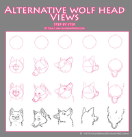 Alternative Wolf Head Views by AcidPaw