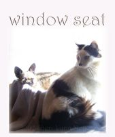 Window Seat by 1footonthedawn