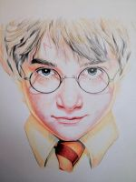Harry Potter by Sampl3dBeans