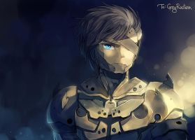 Raiden by anocurry