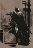 30-60-90 Batman II by MahmudAsrar