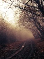 The journey within by Danutza88