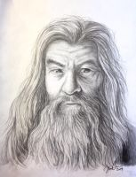 Gandalf by Cederin