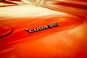 cuda 340 by theCrow65
