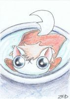 Funny cat is ponyo by KingZoidLord