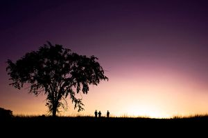 silhouettes by pholwises