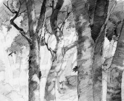 Forest - pencil by art-ori
