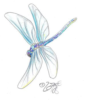 Dragonfly Tattoo Design by 2Face-Tattoo