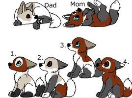 CharlieXCloe-Pups for sale by TwilightLuv10