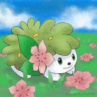 Pokemon Shaymin Flower Hunting by princess-phoenix