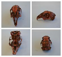 red rat skull by charlie-chaplin