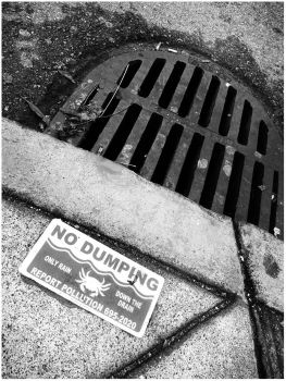 no dumping please. by mami-janin