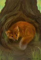 Fox in the forest by Miu3