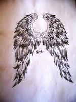 angel wings by tinaLydon