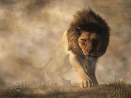 Lion by deskridge