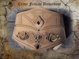 Celtic Female Underbust - WIP 2 by Deakath