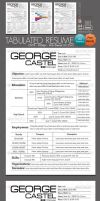 A tabulated resume template by kh2838