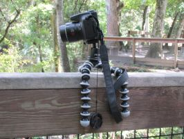 Chris's camera on a joby by Sorath-Rising