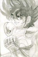 Saint Seiya by HeavenlyHimeOfficial