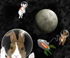 Bunnies in Space by LeeAnneKortus