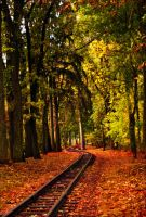 autumn railroad by Kanashii-Hito