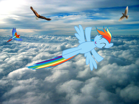 Rainbow Dash Flying in the Sky by queendagi