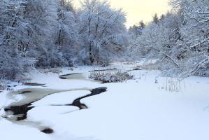 Stock Winter Stream by Celem