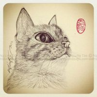 cat drawing practice (04) by tamaow