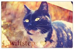 Swiftsteps. by ViperInsidious
