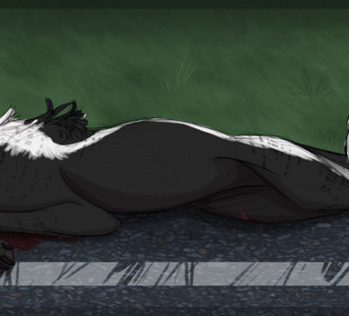 {ToY} Skunk on the road by NoteS28