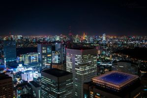 Welcome to Tokyo by surplu