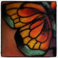 Detail pic butterfly cover! by jerrrroen