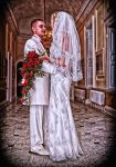 Wedding 2 by Wayne4585