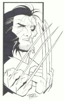 sketchy : Adamantium by KidNotorious