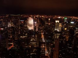 Manhattan from Above 1 by thegreatjason