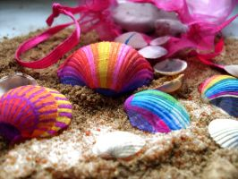 Colourful Seashells by silverhawk41