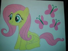 Canvas Fluttershy by BuckingBrony