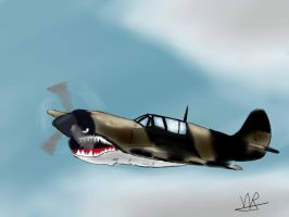 MUSTANG P-51 by infernal69