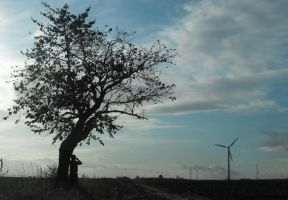 A man and a windmill by House666