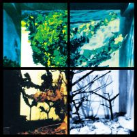 A Sense Of Place: four seasons by headwired